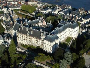 Vista del Castillo de Blois